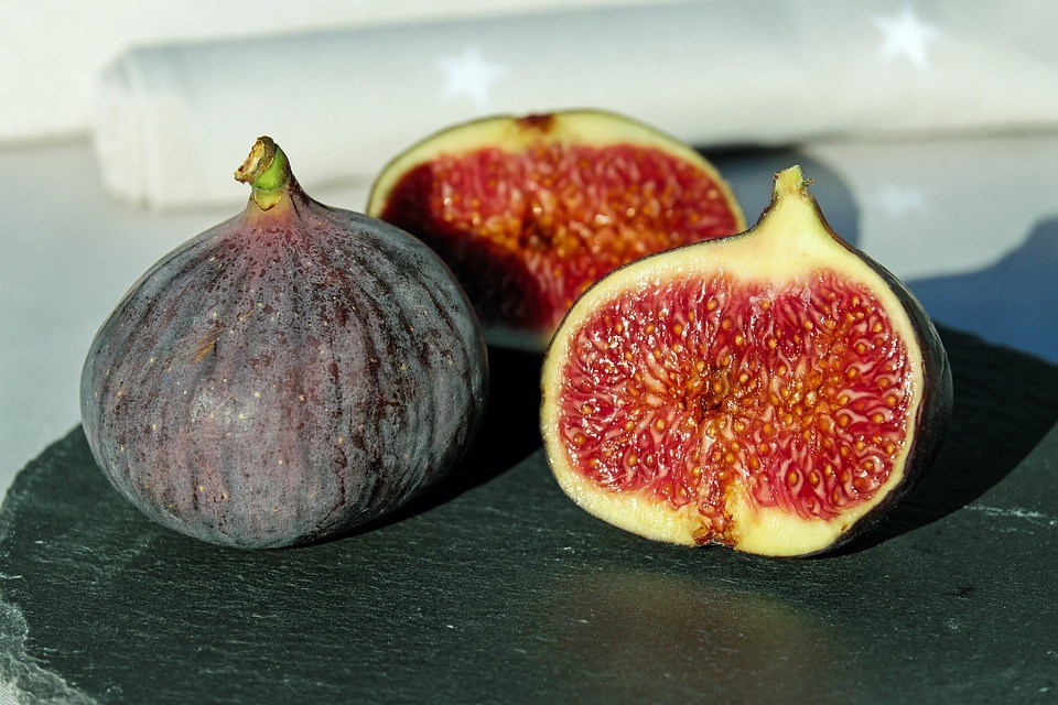 figs-1620664_960_720