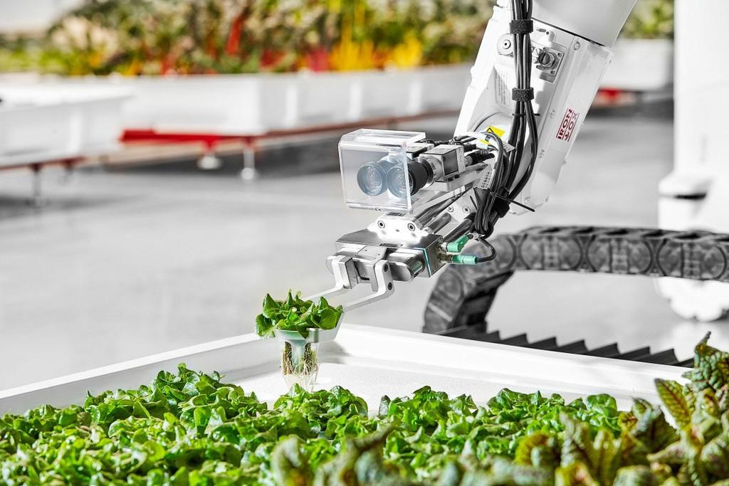 Esta granja autónoma produce más alimento y prescinde de trabajadores humanos