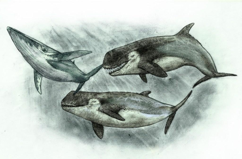 Ilustración de la bestía marina de Río Negro Sebastián Rozadilla