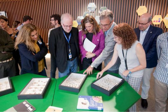Evolución y Conservación de Plantas en el Parque de las Ciencias