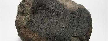 Este es el meteorito más estudiado del mundo y hace 50 años que cayó en la Tierra