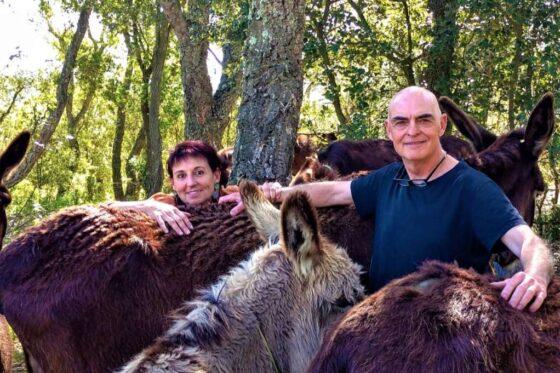 Una campaña solidaria evita el cierre de la Reserva de burros Rukimon