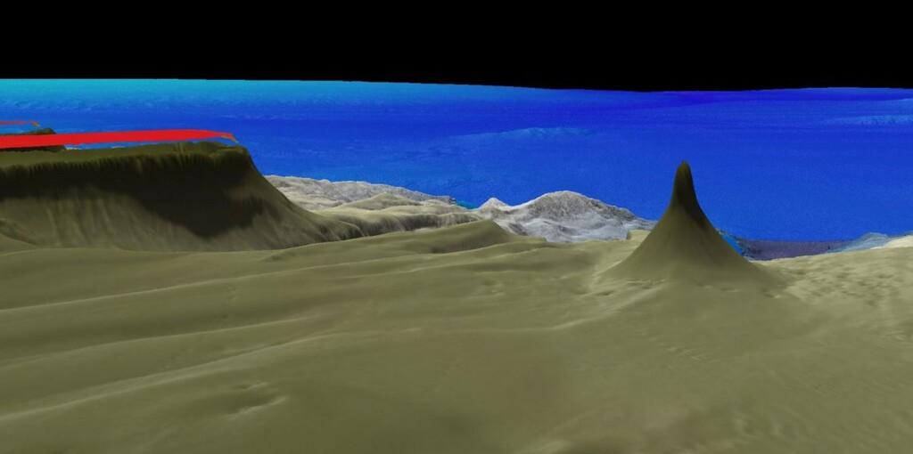 Este arrecife de coral recién descubierto es gigantesco: tiene 500 metros de altura
